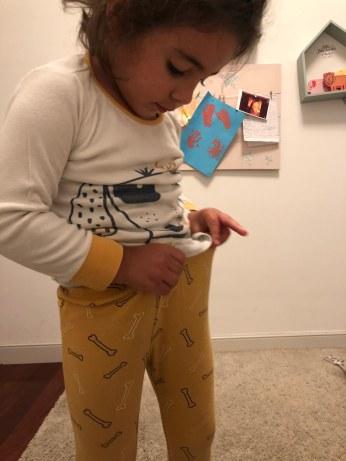 Goya, retos de autonomía 1